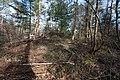 Grabhügel Haltern Bodendenkmal B011 MKZ 4209,84 2019-02-17 Haard-8299.jpg