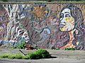 Grafiti Mapocho Michelle Pena 2015 10 26 fRF 23.jpg