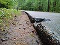 Grajzerówka way, WPN.jpg