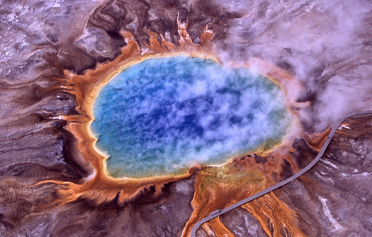Qué diferencia hay entre bacterias y arqueas