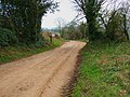 Green Lane - geograph.org.uk - 366165.jpg