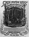 Green mountain boys gathering materials for Paine's celebrated green mountain balm of Gilead and cedar plaster. For sale here LCCN2003666971.jpg