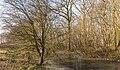 Grens tussen natuurterrein De Famberhorst en park Heremastate. Locatie, Natuurterrein De Famberhorst.jpg