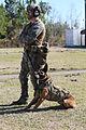 Gulf Coast region plays host to MARSOC Realistic Military Training 150210-M-AB123-220.jpg