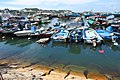 HK 長洲 Cheung Chau 北社海傍路 Pak She Praya Road 長洲避風塘 Typhoon Shelter May 2018 IX2 10.jpg