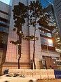 HK WC 灣仔 Wan Chai 黃昏 evening Harcourt Road Lockhart Road via 軍器廠街 One Hennessy June 2020 SS2 01.jpg