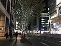 Hakata-Ekimae-dori Street at night 20191120.jpg