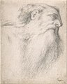 Head of a Bearded Man MET DP810264.jpg
