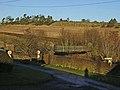 Heatherslaw Bridge - geograph.org.uk - 1079308.jpg