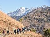 Hikers IIT Mandi Griffon Peak, Himachal Jan20 D72 13723.jpg