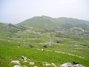 Kitakyūshū Quasi-National Park - Hiraodai karst plateau