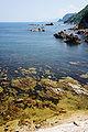 Hiyoriyama Coast Toyooka Hyogo pref04bs4500.jpg