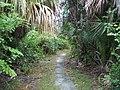 Hobe Sound FL NWR02.jpg