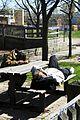 Homeless men sleeping rough on Parliament Street.jpg