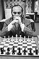 Hoogovenschaaktoernooi, 5e ronde Portisch, Bestanddeelnr 929-5424.jpg