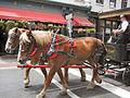 Horse and Carriage Savannah.jpg