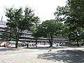 Horse racing @ Tokyo Race Course @ Fuchu (14117859802).jpg