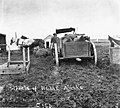 Horses and carts stuck in muddy street, Nome, Alaska, between 1900 and 1908 (AL+CA 6606).jpg