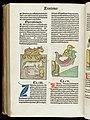 Hortus sanitatis Wellcome L0048111.jpg