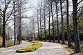 Hyogo Prefectural Flower Center Kasai Japan05s3.jpg