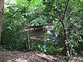 Hyotan Pond, Komae.jpg