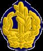 IDF RASAM Yam-2.png