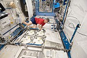 ISS-20 Robert Thirsk at the Minus Eighty Degree Laboratory Freezer