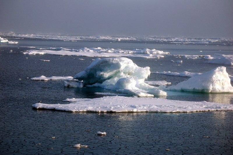 Ice in the East Siberian Sea (RAS NOAA RUSALCA 2009)