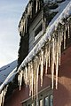 Icicles, Great Saxham - geograph.org.uk - 1635550.jpg