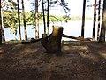 Ignalina, Lithuania - panoramio (7).jpg