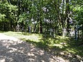 Ilgio saltinis (6) - panoramio.jpg