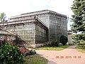 Imperial Botanical Garden 1713 - panoramio (12).jpg