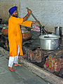 India-0411 - Flickr - archer10 (Dennis).jpg