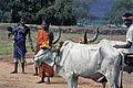 India-1970 093 hg.jpg