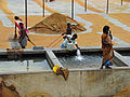 India - Sights & Culture - 38 - rice production (2458017475).jpg