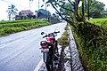 Indonesia - Ubud (26814338251).jpg