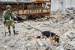 International Mine Action Center in Syria (Aleppo) 13.jpg