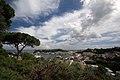 Ischia - panoramio (3).jpg