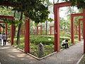 JXVCEF Garden.JPG