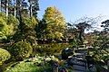 Japanese Tea Garden San Francisco December 2016 002.jpg