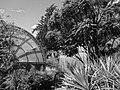 Jardín Botánico de Quito, pic. a01.JPG