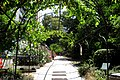 Jardin Botanico (34) (9379356274).jpg