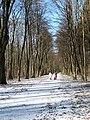 Jednodniowa zima w Parku Młocińskim - panoramio.jpg