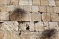 Jerusalem (8141551759).jpg