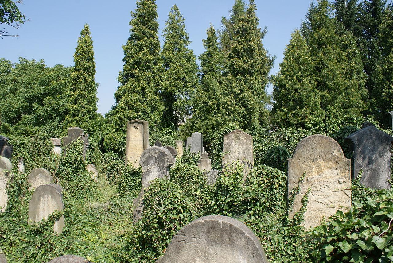 Jewish cemetery in Nové Strašecí 13.JPG