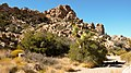 Joshua Tree National Park - panoramio (9).jpg