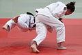 Judo throw.jpg