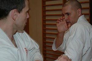 English: Martial arts training session Dansk: ...