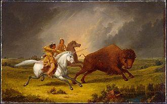 Assiniboine - Assiniboine Hunting Buffalo, 1851