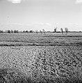 Karakteristieke landschappen, molens, Bestanddeelnr 164-0296.jpg